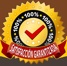 100-satisfaccion